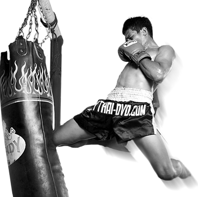 Muay Thai DVDs Material Arts